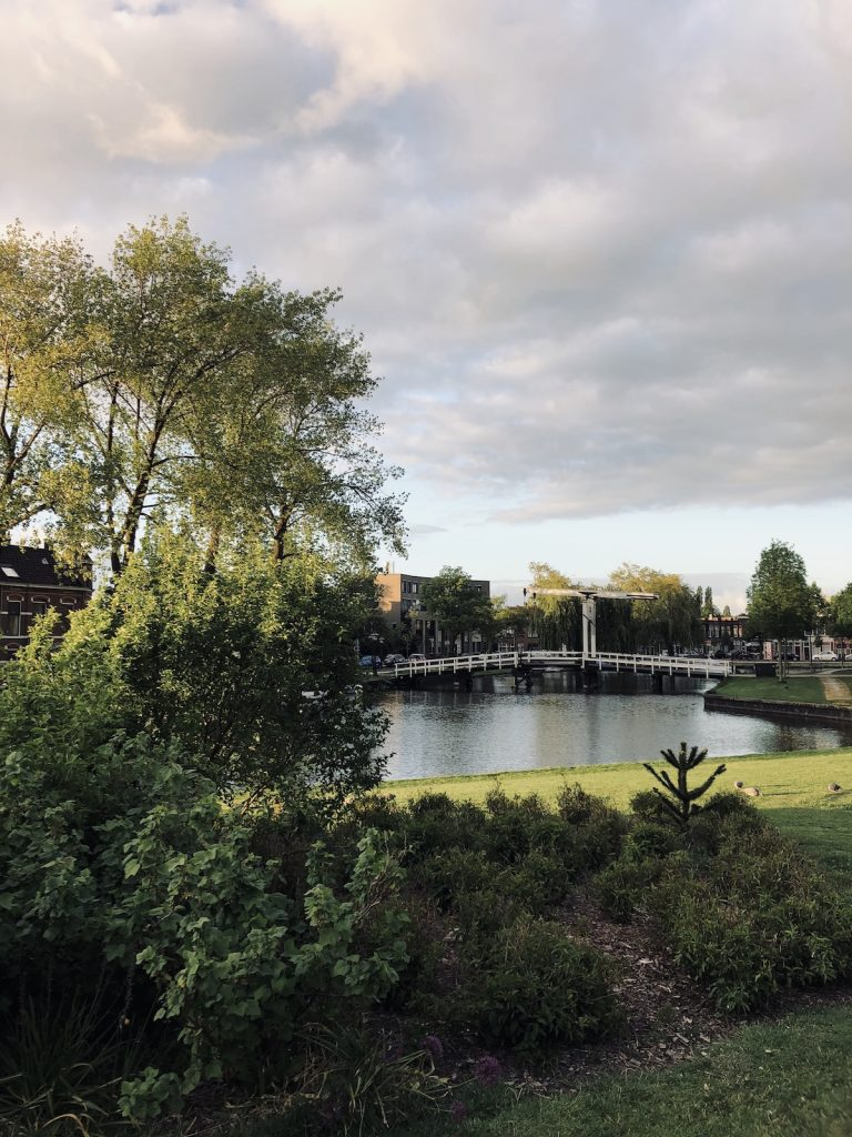 Huigpark view