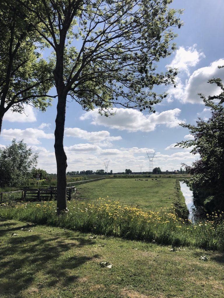 Leiderdorp view